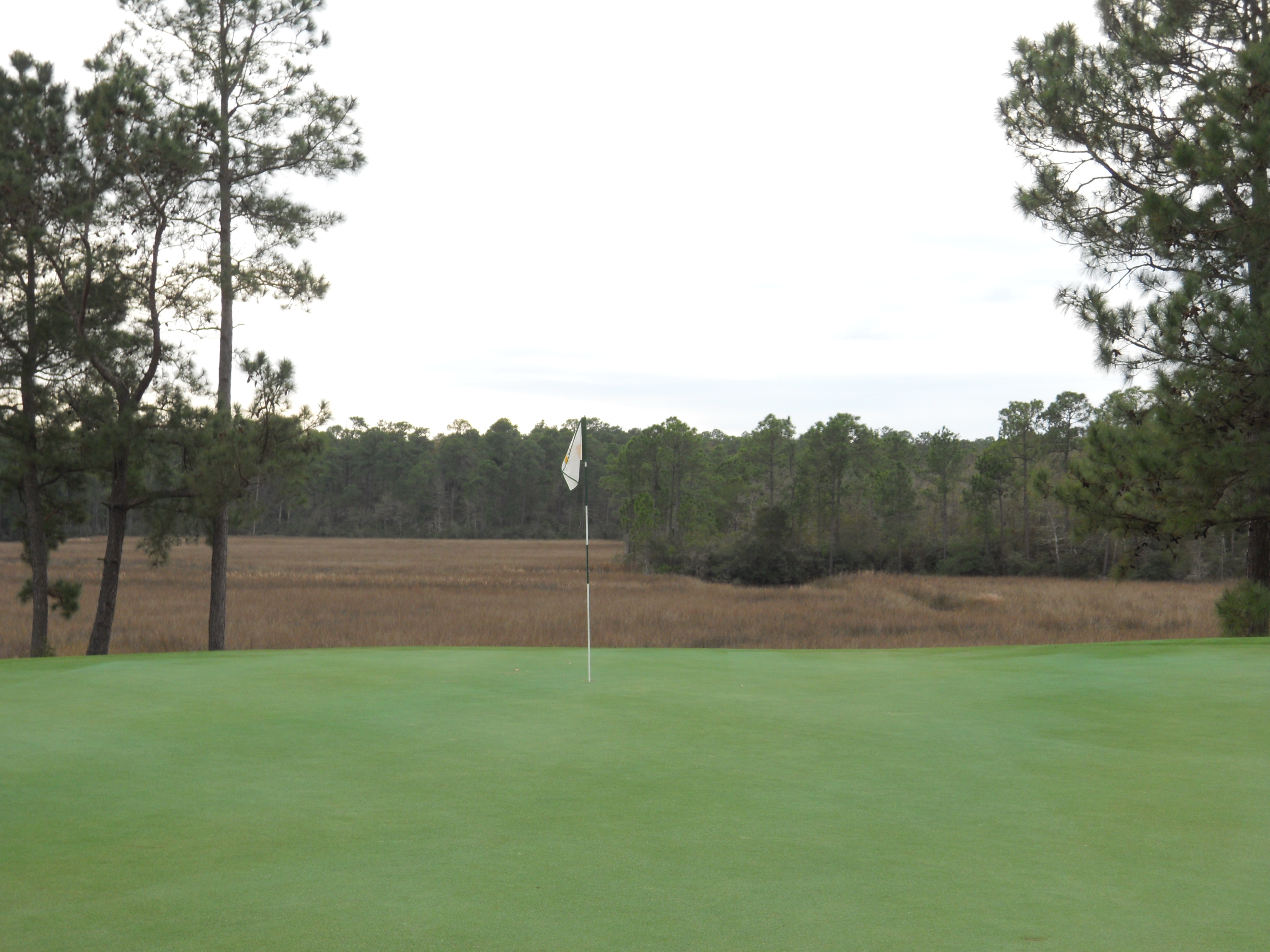Schoolnik's golf travels at Shell Landing Gautier Mississippi
