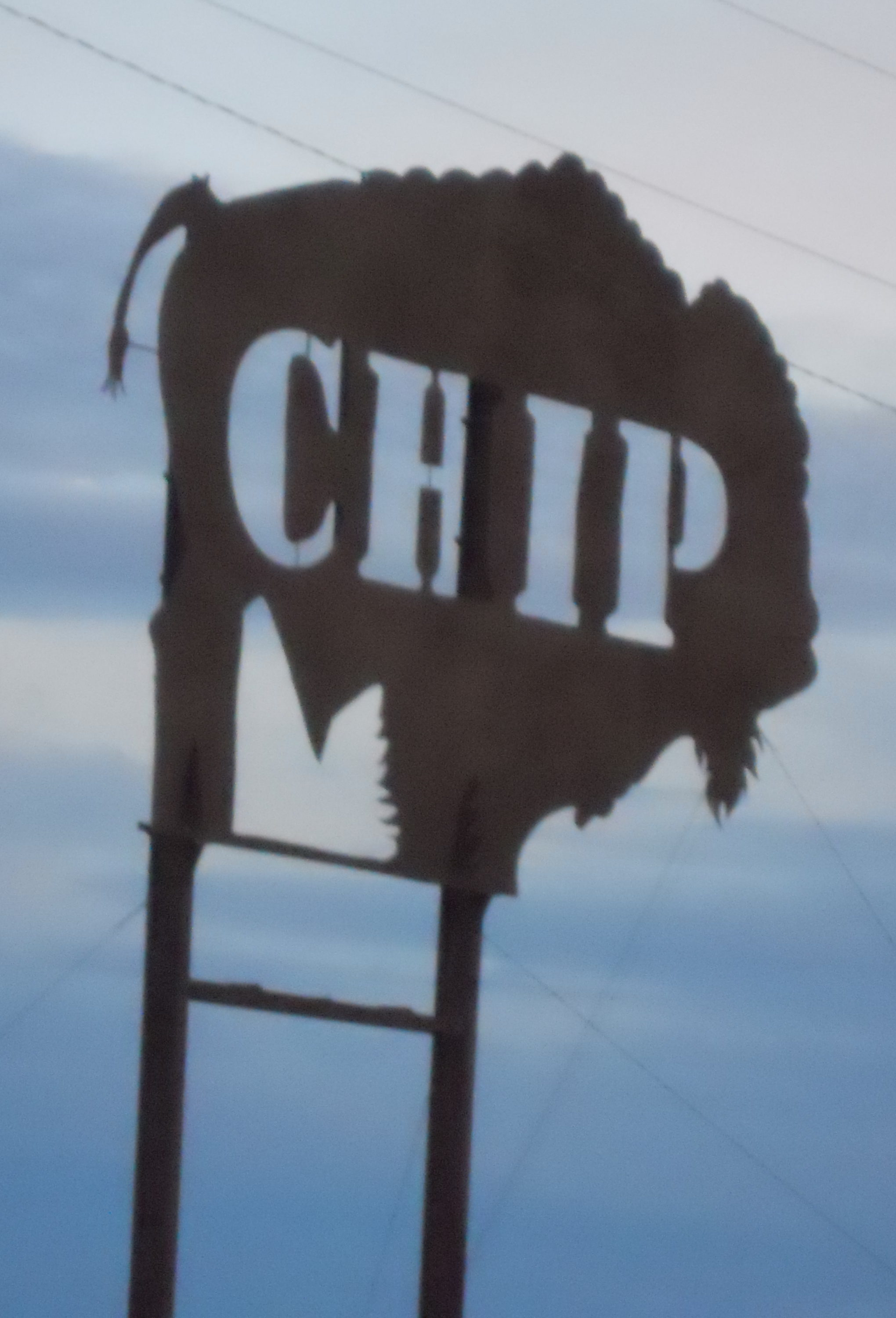 Buffalo Chip, Sturgis, North Dakota. Metal signon post